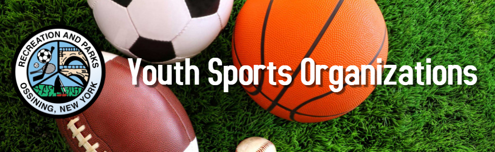 Youth Sports Organizations