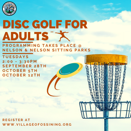 Disc Golf for Adults